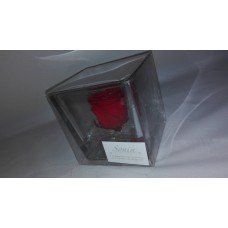 CUBO ICE RED
